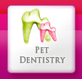 Pet Dentistry